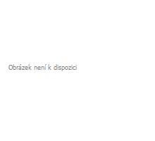 TCP2RTU_PoE: Převodník MODBUS TCP na RTU/ASCII s PoE napájením